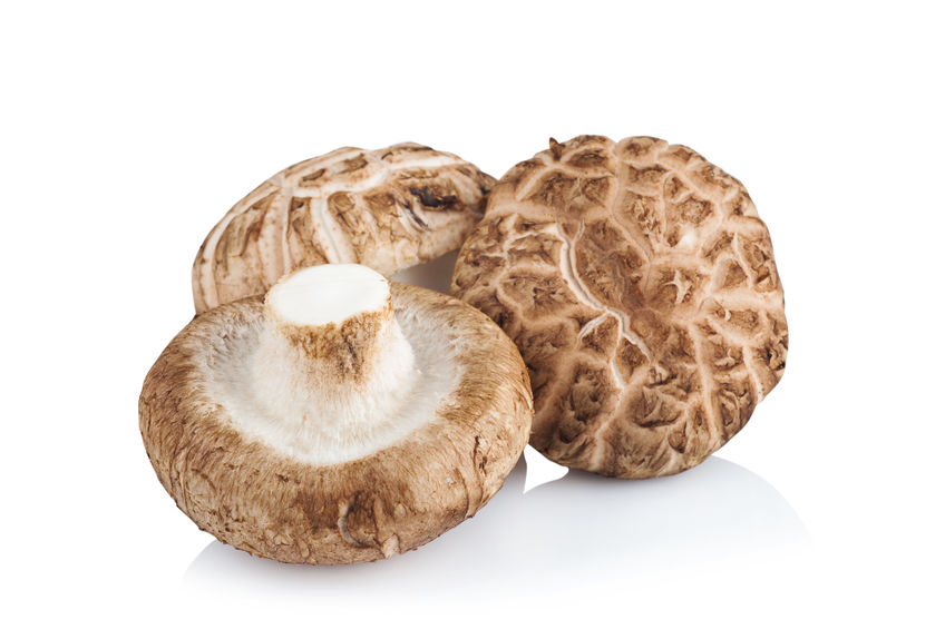 Funghi: Mu Ehr e Shiitake