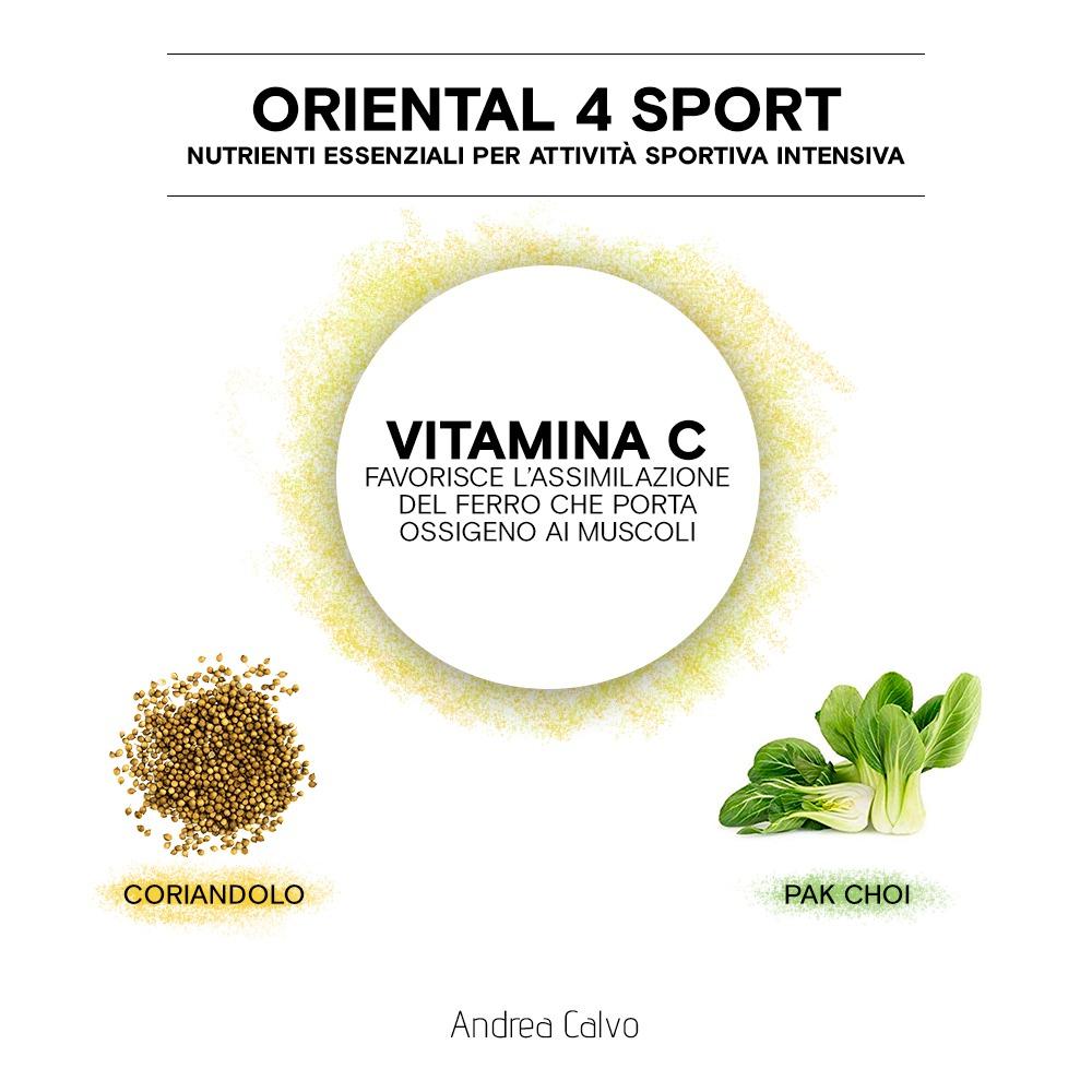 Oriental 4 sport